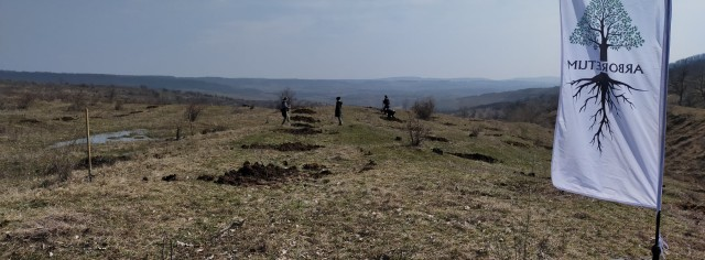 Improvement of degraded lands by planting forests with high added value in Varzaresti locality, Nisporeni district