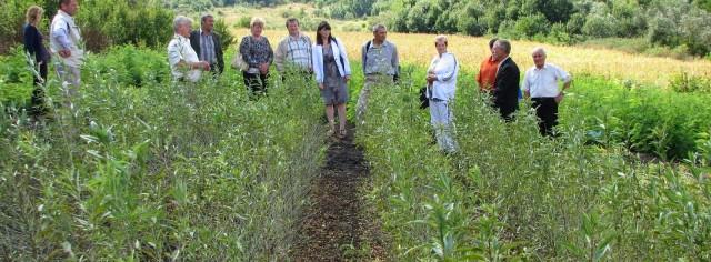 Formarea Rețelei Ecologice Naționale – contribuție la nivel local și național